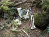 More bones in the Aokigahara Forest