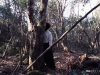 Suicide victim of the Aokigahara Forest